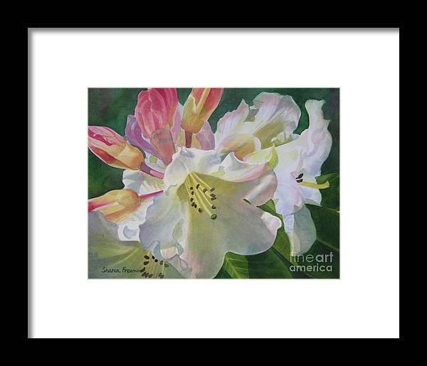 Yellow Framed Print featuring the painting Yellow Rhododendron With Buds by Sharon Freeman