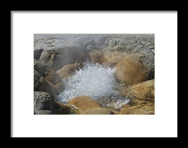 Adventure Framed Print featuring the photograph Yellowstone Hot Springs 9499 by Michael Peychich