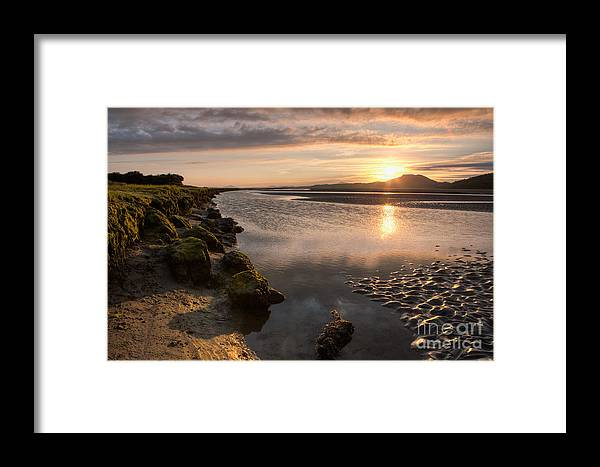 Portmeirion Framed Print featuring the photograph Ynys by Rory Trappe