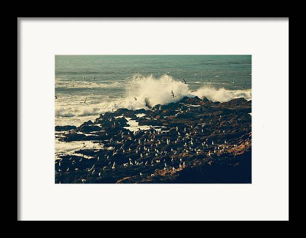 Cambria Framed Print featuring the photograph You Came Crashing Into My Heart by Laurie Search