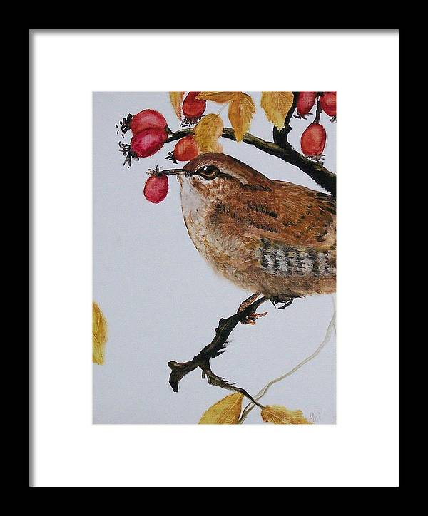 Painting Framed Print featuring the painting  Wren by Pamela Wilson