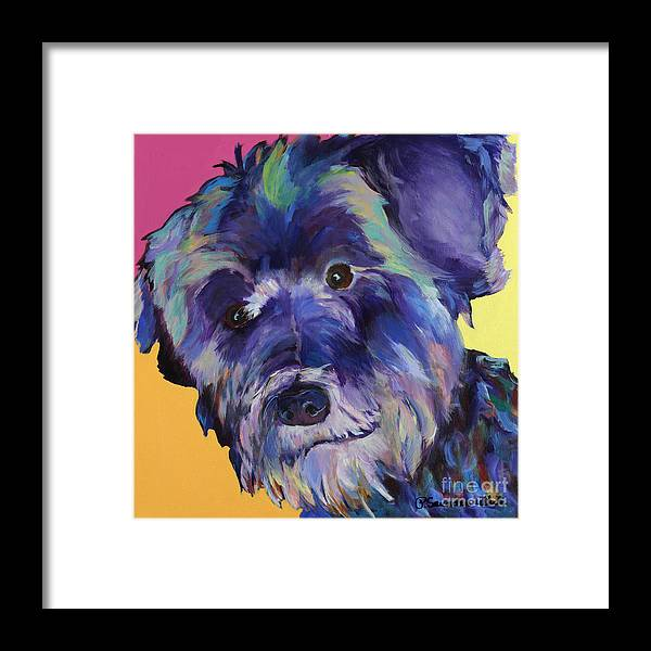 Schnauzer Acrylic Painting Framed Print featuring the painting Beau by Pat Saunders-White