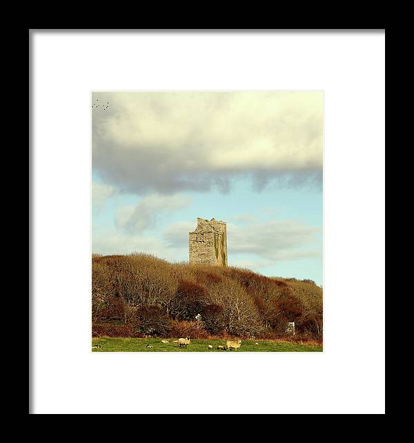 Landscape Framed Print featuring the photograph Castle With Sheep by Ann O Connell