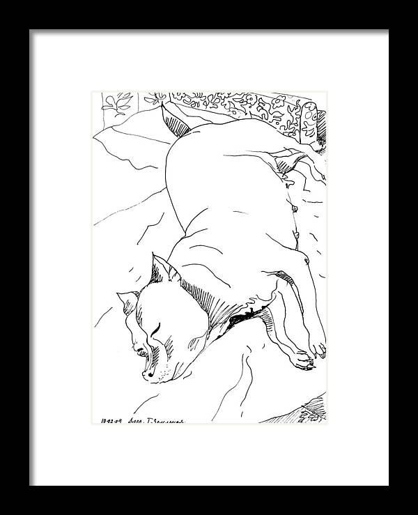 Graphic Dog Breed Framed Print featuring the drawing Dog Breed by Tamara Zemlyanaya