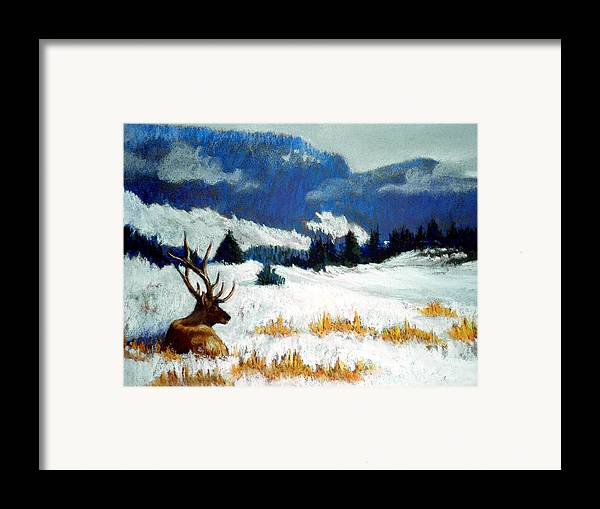 Mountain Snow Landscape Painting Framed Print featuring the pastel High Country Elk by Curt Peifley