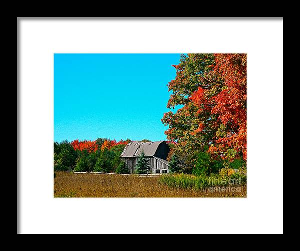 Old Barn Framed Print featuring the photograph Old Barn In Fall Color by Robert Pearson