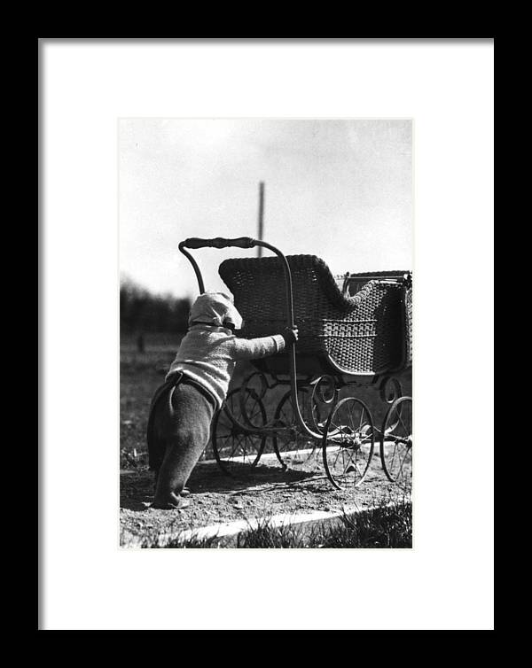 Toddler Framed Print featuring the photograph Toddler Pushing Baby Buggy 1926 Black White Boy by Mark Goebel