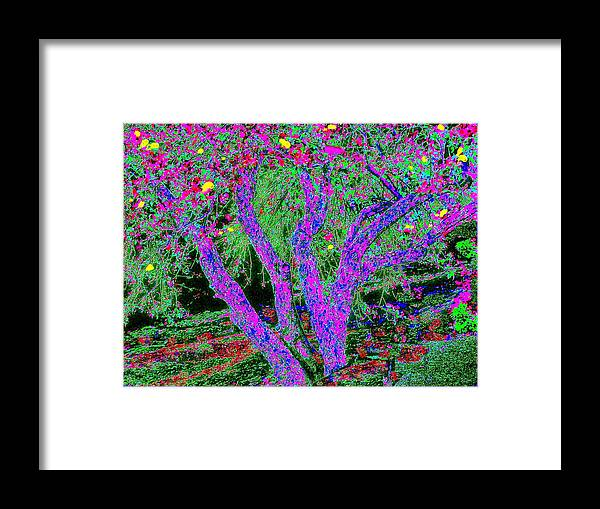 Abstract Landscape Framed Print featuring the painting 007h Abstract Arcadia Tree by Ed Immar