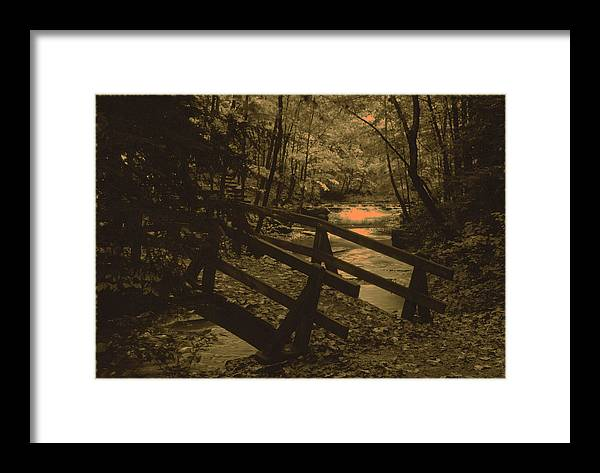 Bridge Framed Print featuring the photograph 031207-21-s by Mike Davis