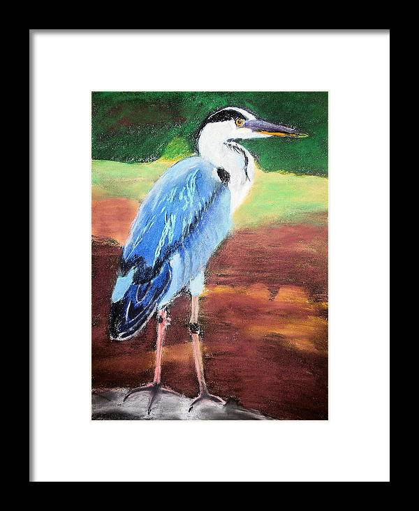 Female Framed Print featuring the painting 08282016 Female Blue Heron by Garland Oldham