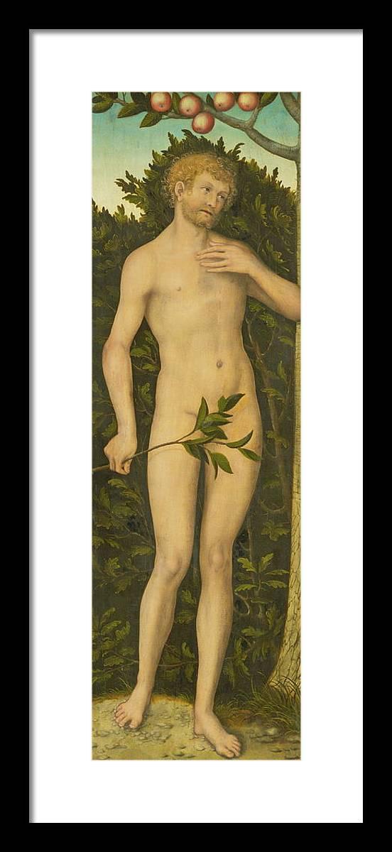 Adam Framed Print featuring the painting Adam by Lucas Cranach the Elder
