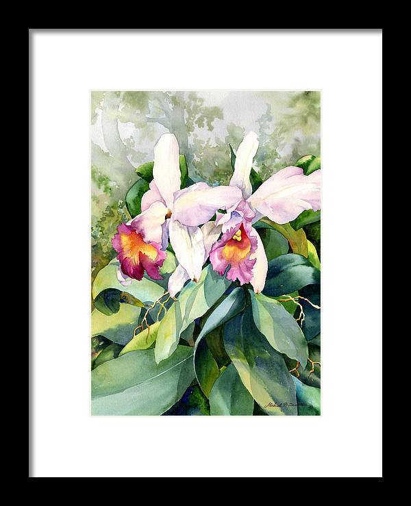 Orchid Framed Print featuring the painting Afternoon Delight by Michael Pearson