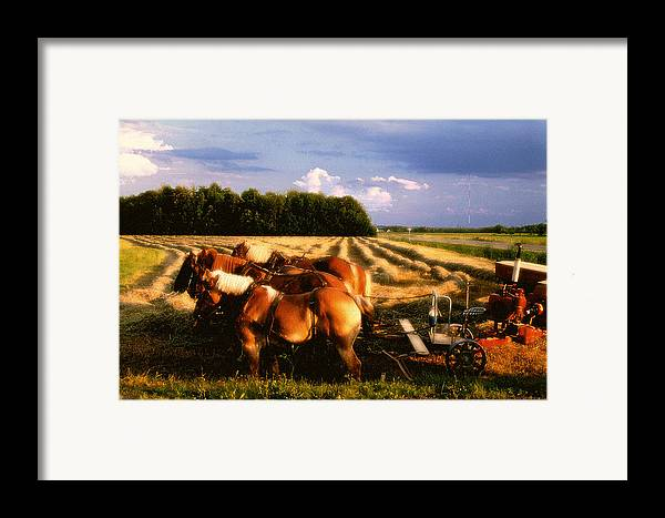 Harvest Framed Print featuring the photograph Amish Hay Rig by Roger Soule