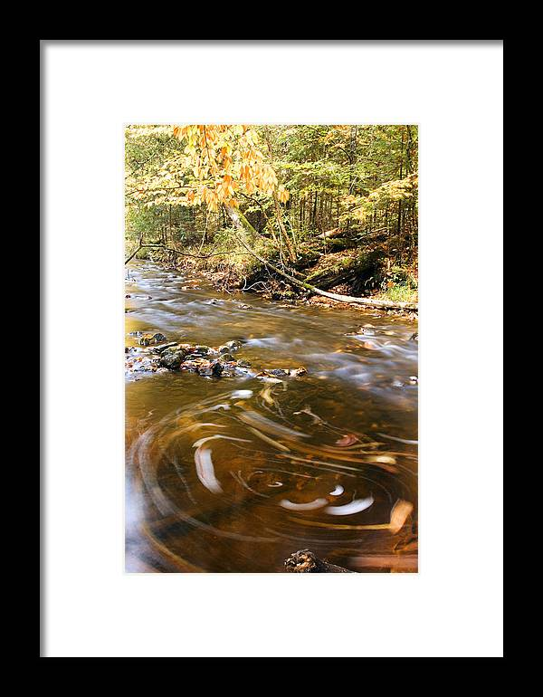 Michigan Framed Print featuring the photograph Autumn Swirl by Amanda Kiplinger