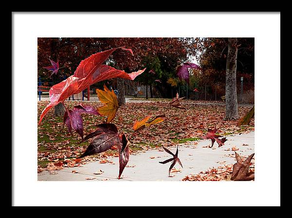 Landscape Framed Print featuring the photograph Autumn Wind by Richard Gordon