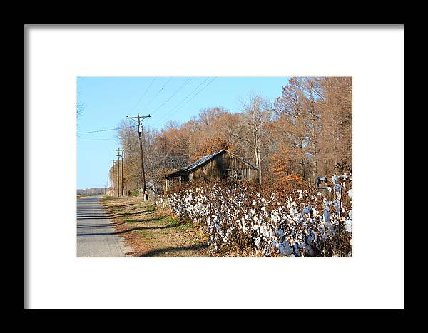 House Framed Print featuring the photograph Back Roads Of Ms by Karen Wagner