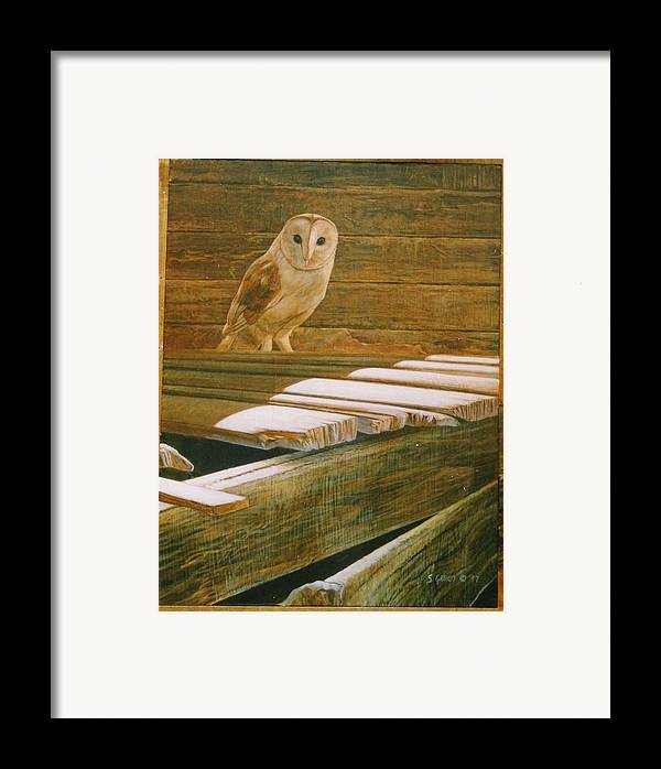 Wildlife Framed Print featuring the painting Barn Owl by Steve Greco