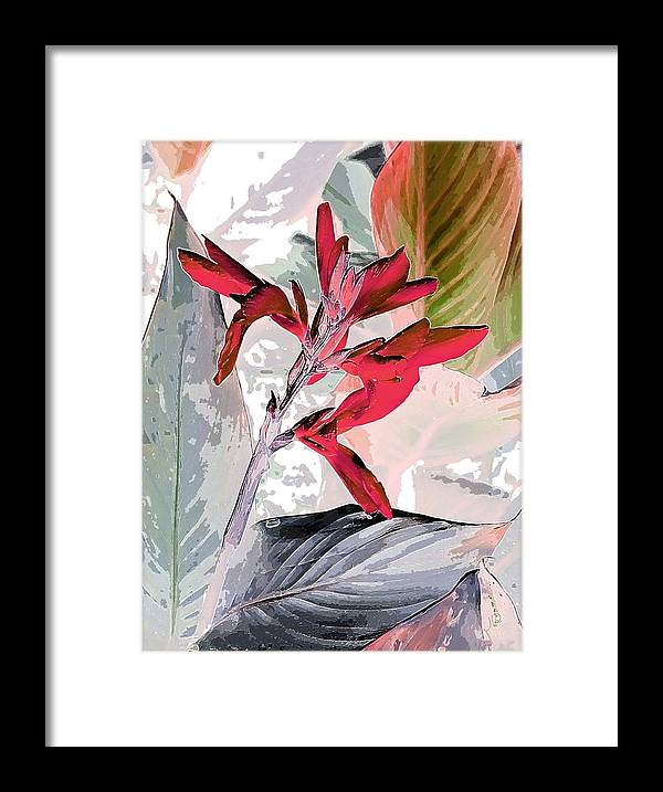 Bird Of Paradise Framed Print featuring the photograph Bird Of Paradise 5 by Jim Darnall