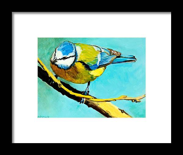 Bird Framed Print featuring the painting Blue On His Stick by Debbie Beukema