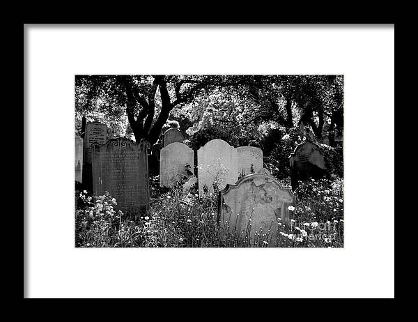 Cemetery Framed Print featuring the photograph Brompton Cemetery London England 2009 by Wayne Higgs