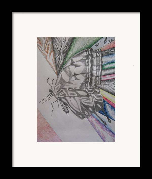 Butterfly Framed Print featuring the drawing Butterfly Light by Theodora Dimitrijevic