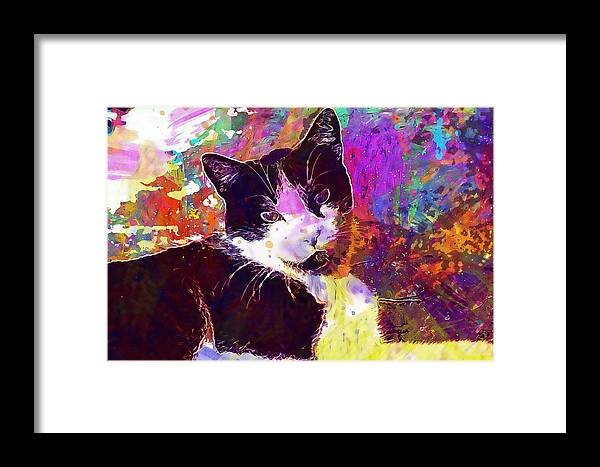 Cat Framed Print featuring the digital art Cat Feline Pet Animal Cute by PixBreak Art