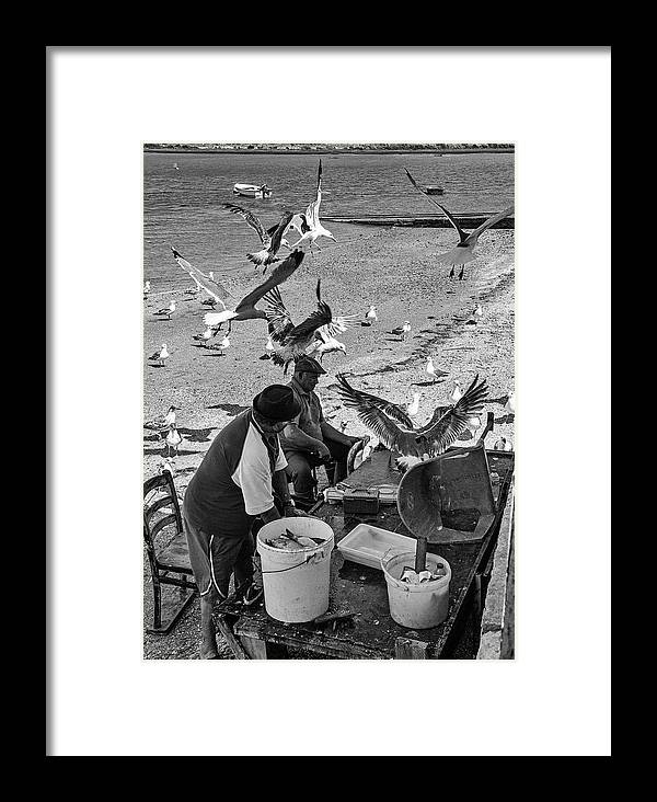 Catch Framed Print featuring the photograph Catch Of The Day by Jeff Townsend