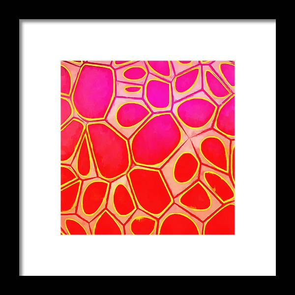 Painting Framed Print featuring the painting Cells Abstract Three by Edward Fielding
