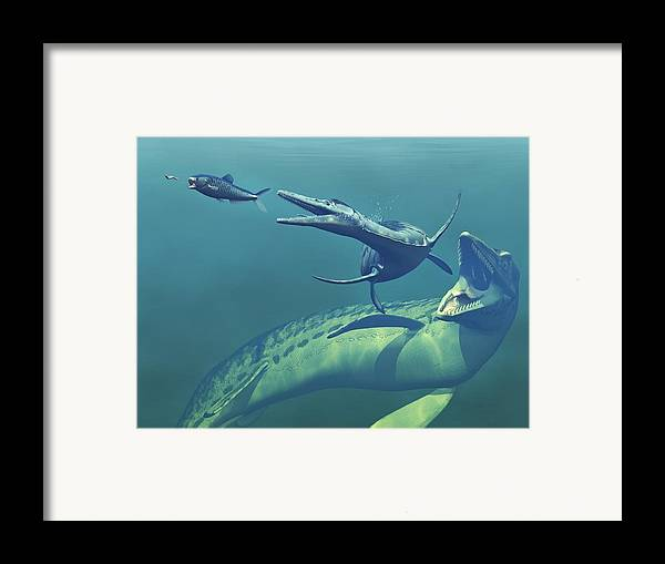 Enchodus Framed Print featuring the photograph Cretaceous Marine Predators, Artwork by Walter Myers