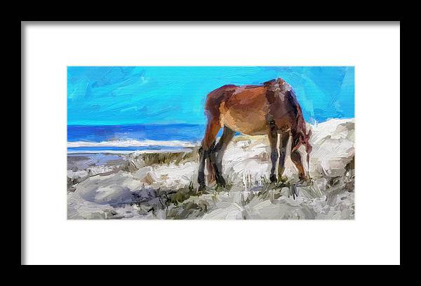 Cumberland Island Pony Horse Framed Print featuring the digital art Cumberland Pony by Scott Waters