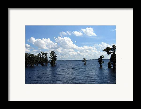 Scenic Lake Photograph Framed Print featuring the photograph Cypress Cove by Frederic Kohli