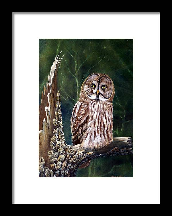 Wildlife Framed Print featuring the painting Deep In The Woods by Frank Wilson