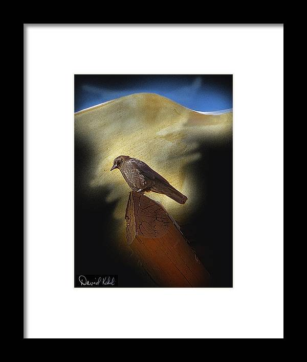 Romantic Framed Print featuring the photograph Deep In Thought by David Kehrli