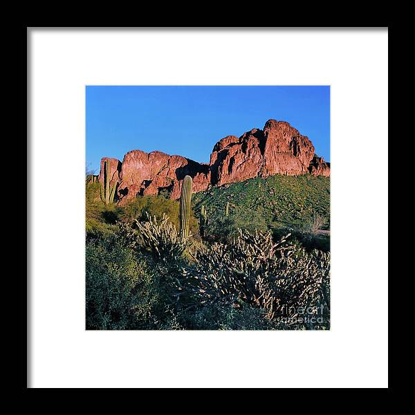 Afternoon Framed Print featuring the photograph Desert Landscape by Crystal Garner