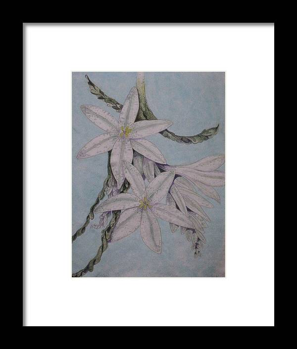 Flowers Framed Print featuring the painting Desert Lillie by David Kelly