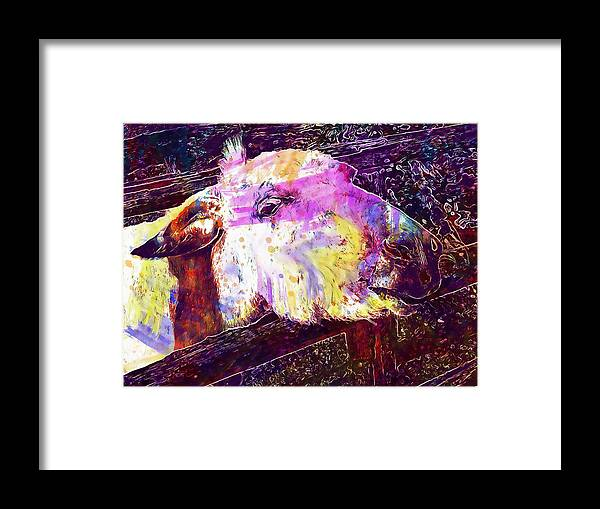 Donkey Framed Print featuring the digital art Donkey Livestock Beast Of Burden by PixBreak Art