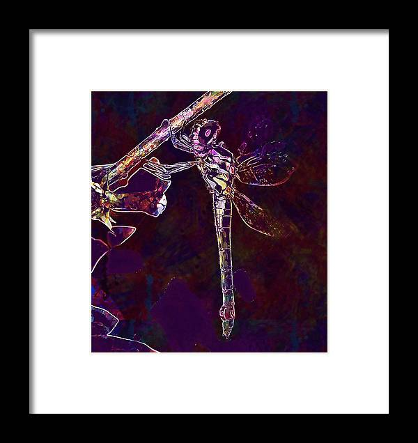 Dragonfly Framed Print featuring the digital art Dragonfly Insect Winged Insect by PixBreak Art