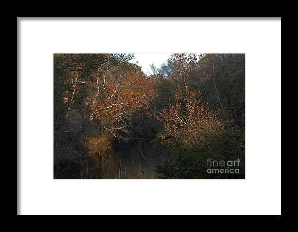 Fall Leaves Framed Print featuring the photograph Flint River by Bernd Billmayer