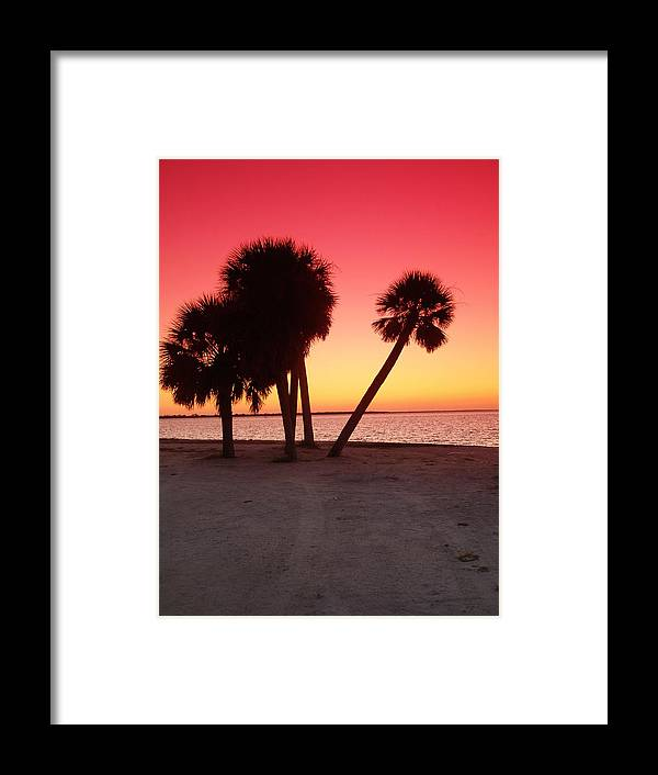 Tropical Framed Print featuring the photograph Florida Gulf Sunset by Florene Welebny