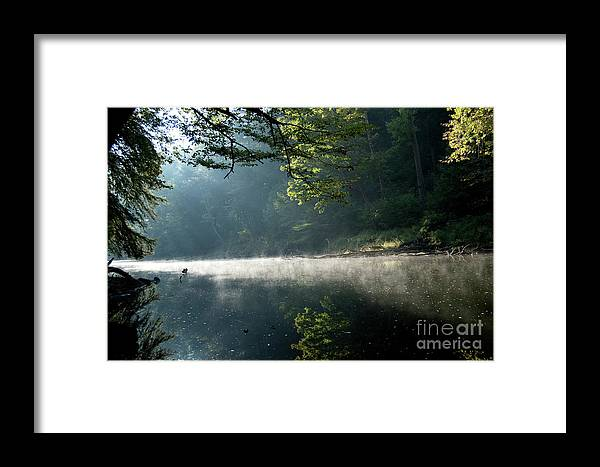 Stream Framed Print featuring the photograph Fog And Reflection On Stream by Michelle Himes