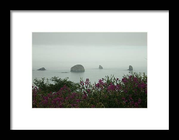 Coast Framed Print featuring the photograph Foggy Viewpoint by Beth Collins