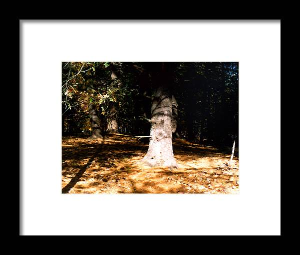 Forest Framed Print featuring the painting Forest Entrance by Paul Sachtleben