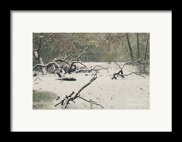 Countryside Framed Print featuring the photograph Frozen Fallen by Andy Smy