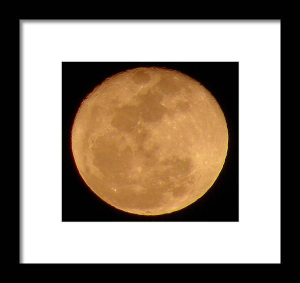 Spring Moon Framed Print featuring the photograph Full Bloom 1 by Kim Zwick