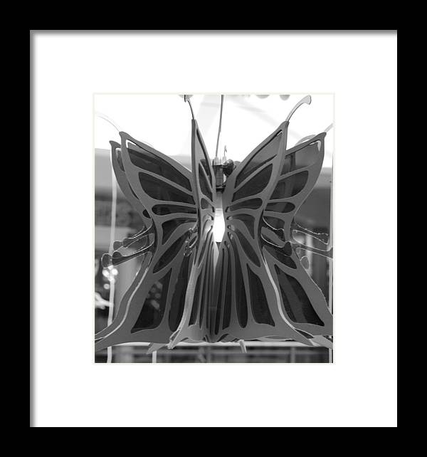 Black And White Framed Print featuring the photograph Hanging Butterfly by Rob Hans