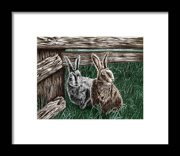 Hare Line Framed Print featuring the drawing Hare Line by Peter Piatt