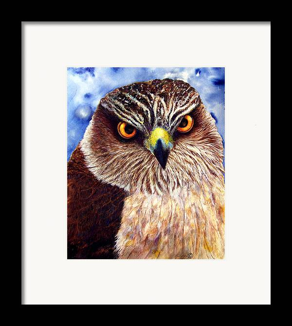 Wild Hawk Framed Print featuring the painting Hawkeyes by JoLyn Holladay