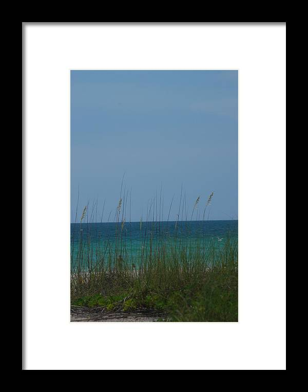Landscape Framed Print featuring the photograph Holmes Beach Florida 2 by Lisa Gabrius