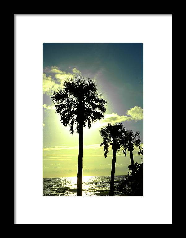 Photography Framed Print featuring the photograph Honeymoon Island Sunset by Susanne Van Hulst