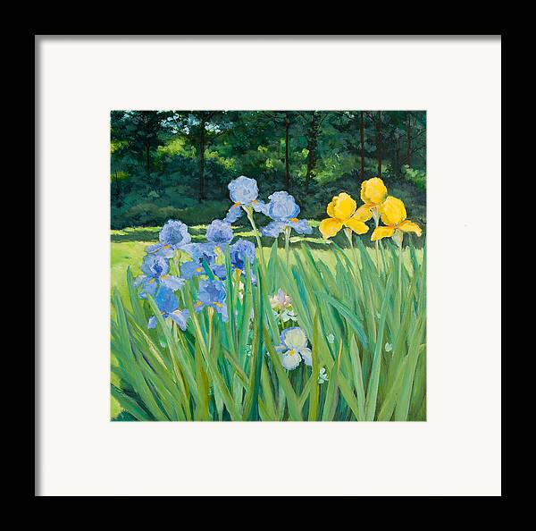 Garden Framed Print featuring the painting Irises In The Garden by Betty McGlamery